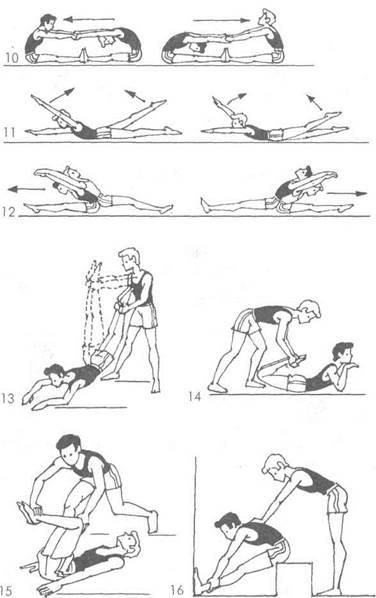 Упражнения для развития активной гибкости в тазобедренном суставе высота щели в норме височно-нижнечелюстных суставов